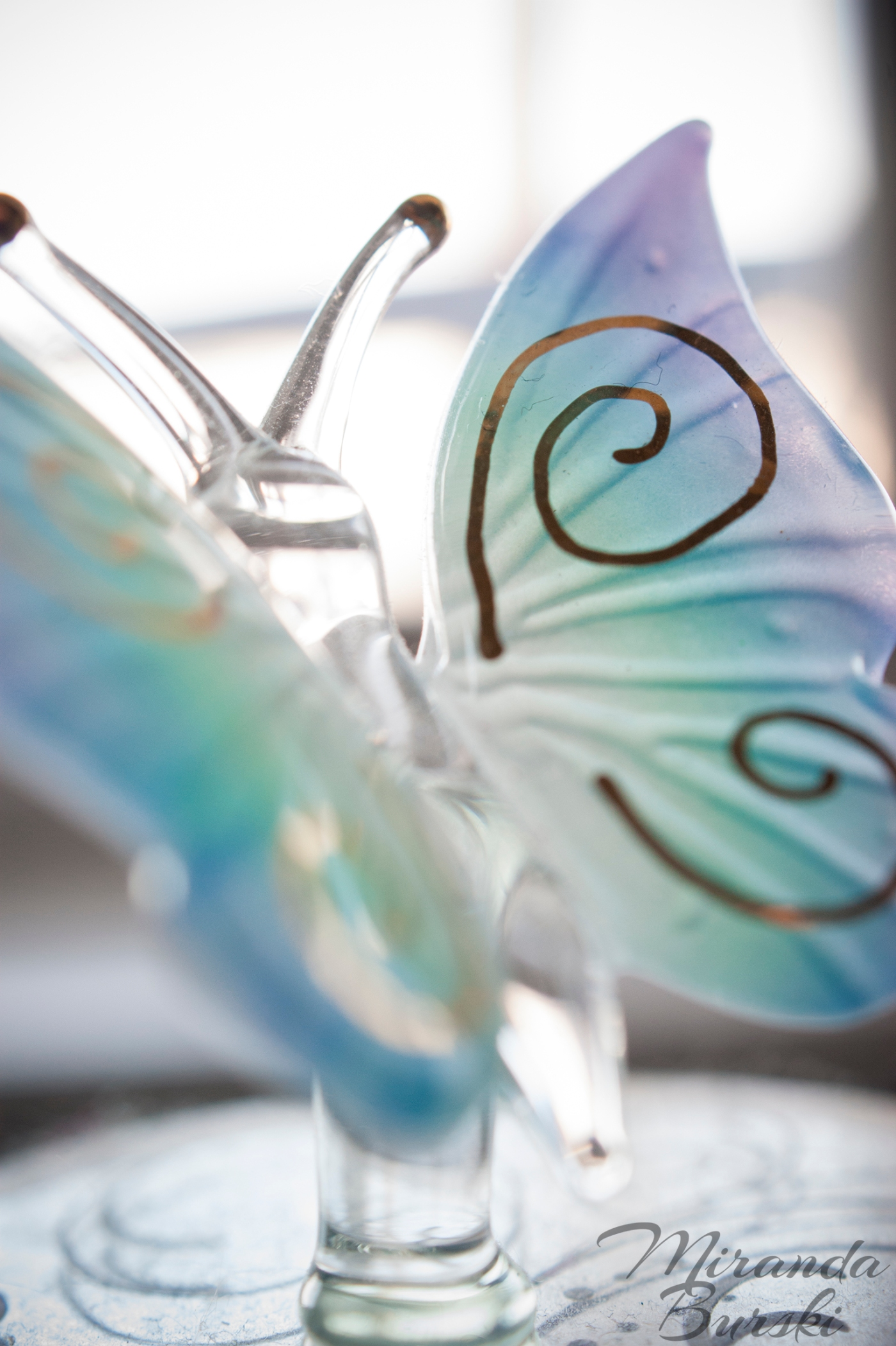 Crystal Butterfly 2