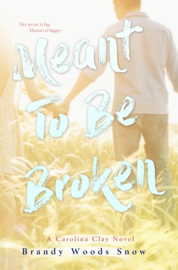 The cover of Meant To Be Broken, by Brandy Woods Snow
