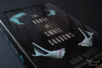 A copy of The House of Small Shadows, by Adam Nevill